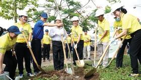 Lãnh đạo tỉnh Sóc Trăng, Tổng công ty Điện lực miền Nam tham gia trồng cây tại thị xã Ngã Năm