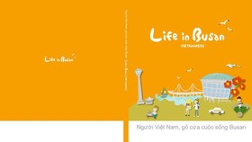 Giao diện một trang thông tin tiếng Việt cho cộng đồng người Việt Nam ở Busan