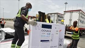 Nhân viên bốc dỡ các thùng vaccine ngừa COVID-19 được viện trợ theo chương trình COVAX toàn cầu, tại Abidjan, Bờ Biển Ngà, ngày 26-2-2021. Ảnh: AFP/TTXVN