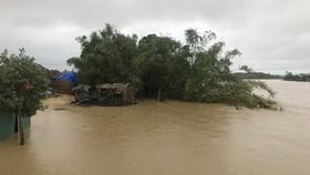 Lũ trên sông Trà Bồng, tỉnh Quảng Ngãi tràn qua xóm Đồng Min. Ảnh: NGUYỄN TRANG
