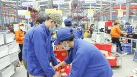 Bình Phước chi hơn 116,6 tỷ đồng hỗ trợ người lao động gặp khó khăn do dịch Covid-19.