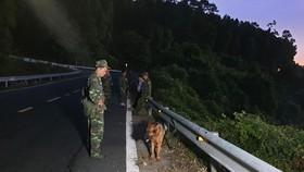 Trắng đêm truy tìm phạm nhân trốn trại lẩn trốn trên đèo Hải Vân