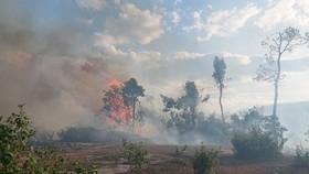 Khu vực cháy là rừng tự nhiên, địa hình ít nguồn nước nên việc chữa cháy gặp nhiều khó khăn