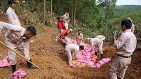 Gần 20 chuyên gia, cán bộ, nhân viên thuộc dự án Nhóm cố vấn bom mìn Anh (MAG) tham gia hủy nổ quả đạn pháo