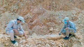 Đội xử lý bom mìn lưu động tiến hành kiểm tra bom MK-82 được phát hiện tại xã Húc (huyện Hướng Hóa, tỉnh Quảng Trị)