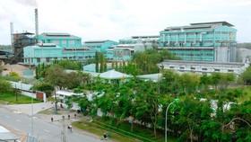 Nhá máy đường Vị Thanh đóng cửa trước vụ sản xuất mới