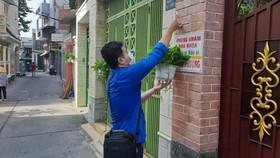 Cao điểm thi đua 200 ngày, quận 5 tổng vệ sinh, cải tạo chung cư, sửa nhà, tặng cây cho người dân
