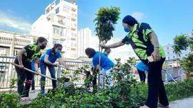 Quận 5 ra quân tổng vệ sinh, trồng cây mừng ngày thống nhất đất nước