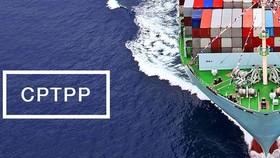 Triển khai biện pháp tự vệ đặc biệt thực thi CPTPP