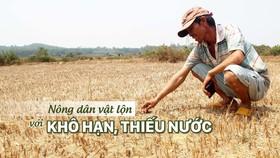 Nông dân vật lộn với khô hạn, thiếu nước