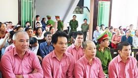 """Phiên xét xử thứ 2 """"đại án"""" phá rừng Bình Định: Trả hồ sơ yêu cầu cơ quan điều tra bổ sung"""