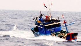 Tàu cá chở 8 cán bộ Viện Hải dương học và 4 ngư dân bị kẹt trong vùng nước xoáy