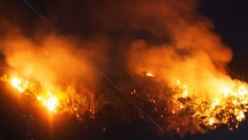 Núi giữa thành phố Quy Nhơn bùng lửa, uy hiếp hàng trăm hộ dân