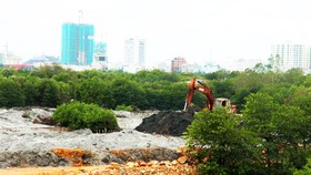 Thu hồi quyết định cho thuê đất, giao đất của Công ty CP Thị Nại Eco Bay