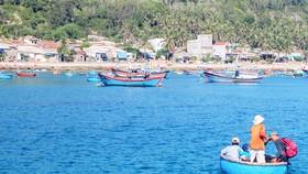 Bình Định tạm dừng hoạt động đón khách tham quan đảo Cù Lao Xanh