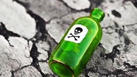 Con rể bỏ thuốc độc vào nước hòng hạ độc nhà vợ ở Bình Định