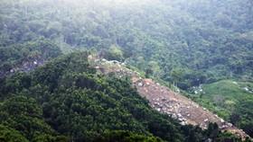 60,9ha rừng bị phá ở An Lão sẽ giao lại cho Bộ Chỉ huy Quân sự quản lý
