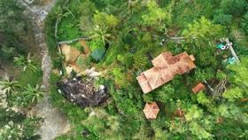 Nguyên Chủ tịch Ủy ban MTTQ tỉnh Bình Định bị phạt 4 triệu đồng vì chuyển đổi đất rừng trái phép