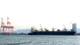 Phát hiện 7 thuyền viên từ Indonesia vào cảng Quy Nhơn nghi mắc Covid-19