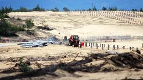Bình Định chỉ đạo xử lý nghiêm vụ phá 5,26ha rừng phòng hộ ven biển