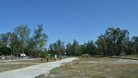 Khởi tố vụ án liên quan đến dự án đô thị Coco Green Home của Công ty Nhất Thành Nam