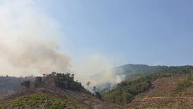 Kịp thời khống chế đám cháy rừng phòng hộ tại Quảng Nam
