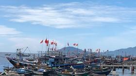 Quảng Nam: Khẩn trương gia cố kè Cửa Đại chạy bão