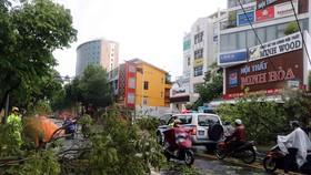 Bão số 5: 2 người chết, mất tích; 31 người bị thương, 2.447 nhà bị tốc mái