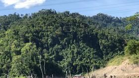 Đánh sập các hầm vàng trong phạm vi Vườn Quốc gia Sông Thanh