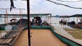 Sà lan tông chìm 2 bè cá trên sông Tiền