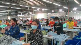 Long An thành lập Tổ vận động hỗ trợ công dân làm việc tại địa phương