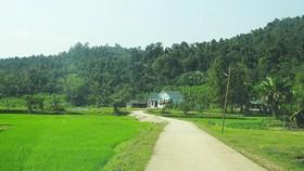 Đường về nhà Chủ tịch xã Xuân Hóa được làm bằng vốn trái phiếu chính phủ và mục tiêu gia xây dựng nông thôn mới. Ảnh: MINH PHONG