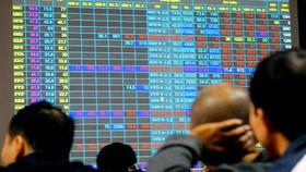 Không ai chịu trách nhiệm về sự cố HoSE, thiệt hại đổ lên nhà đầu tư