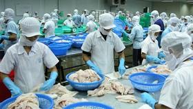 """Lo doanh nghiệp Việt """"chết trên sân nhà"""" vì hàng nước ngoài """"đội lốt"""""""