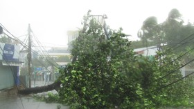 Vũng Tàu mưa lớn, gió giật mạnh, Khánh Hòa - Ninh Thuận ngập lụt, đường sắt tê liệt