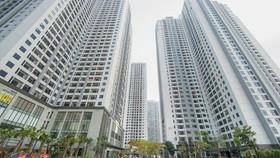 Dòng tiền dịch chuyển từ đất nền sang chung cư
