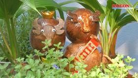 Lạ mắt linh vật trâu dừa bonsai