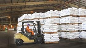 Sản phẩm phân bón Phú Mỹ lần thứ 4 liên tiếp được công nhận là Thương hiệu Quốc gia