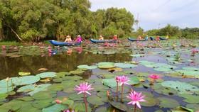 Du khách khám phá cảnh đẹp ở Long An