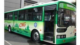 Cần cơ chế ưu đãi để thay thế xe buýt CNG
