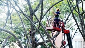 Bảo đảm an toàn nhà dân và các công trình trong mùa mưa bão