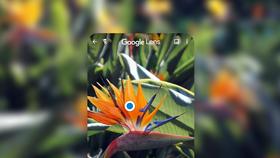Google Ống Kính: Phương thức tìm thông tin, và học thông minh hơn