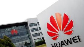 """Huawei khởi động chương trình """"Hạt giống cho tương lai"""" năm 2021"""