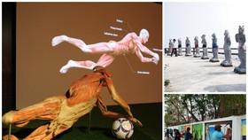 Triển lãm xác ướp được đề cử là sự kiện tồn tại của ngành mỹ thuật, nhiếp ảnh