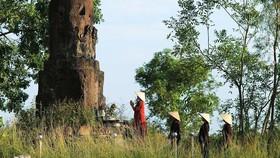 Xây dựng phương án bảo vệ đặc biệt đối với bảo vật quốc gia