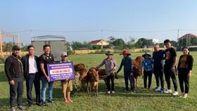 Đoàn của Lý Hoàng Nam tặng bò cho bà con.