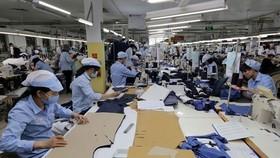 Tháng 7 hàng năm TPHCM sẽ thu thập, lưu trữ, tổng hợp thông tin về thị trường lao động