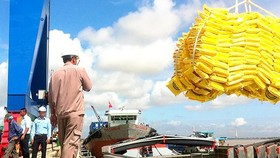 Expectations for first deepwater seaport in the Mekong Delta