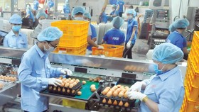 HCMC focuses on preparing goods for Tet holidays