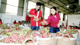 Agricultural product exports near US$34 billion